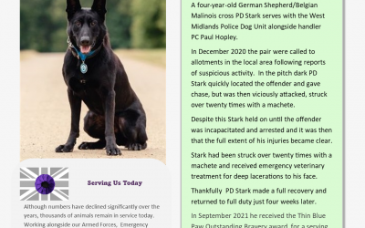 Animals Who Served – Information Sheet 4