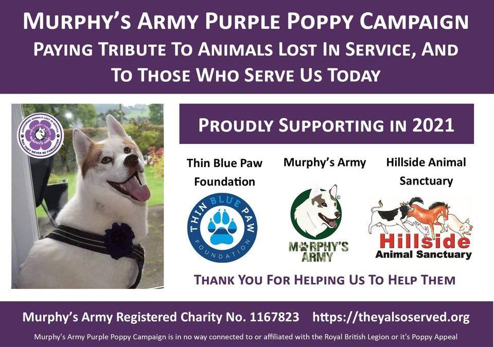 Murphy's Army Purple Poppy Campaign 2021 Launch