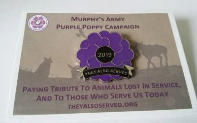 Murphy's Army Purple Poppy Pin Badges 2019