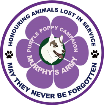 69af678484 Murphy's Army Purple Poppy Campaign | Paying tribute to animals lost ...